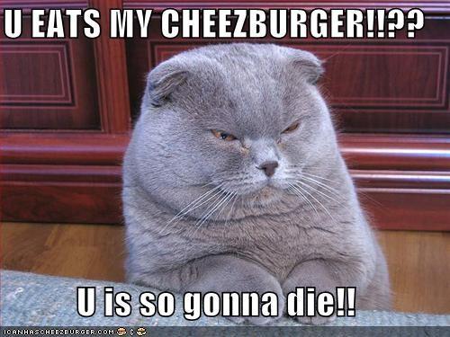 Cheezburger Image 3869263616