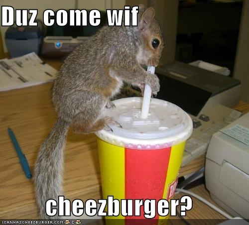 Cheezburger Image 3870089728
