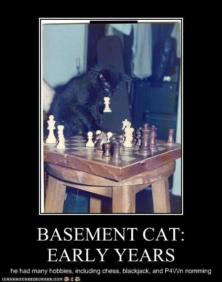 BASEMENT CAT: EARLY YEARS he had many hobbies, including chess, blackjack, and P4\/\/n nomming