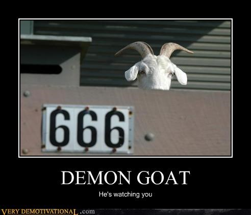 666 animals anthropomorphism demons goats just-kidding-relax satan Terrifying voyeurism - 3870168576