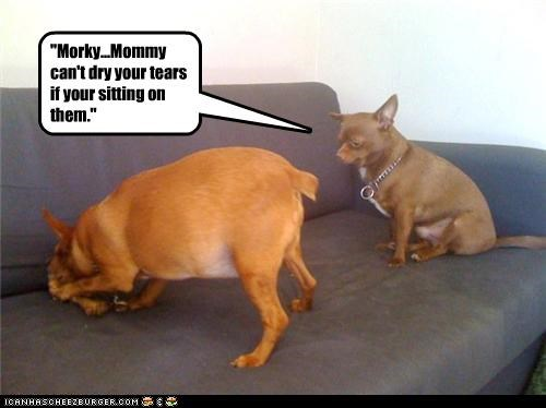 """""""Morky...Mommy can't dry your tears if your sitting on them."""""""