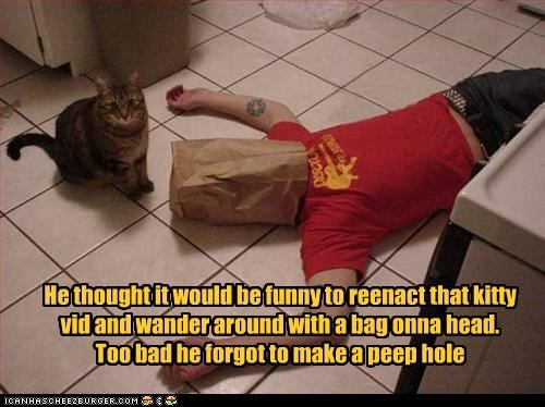 bad idea,caption,captioned,cat,forgot,funny,hoomin,human,imitating,imitation,paper bag,peep hole,pretending,stupid
