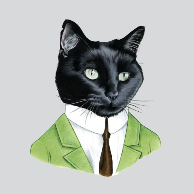 a list of well dressed animals