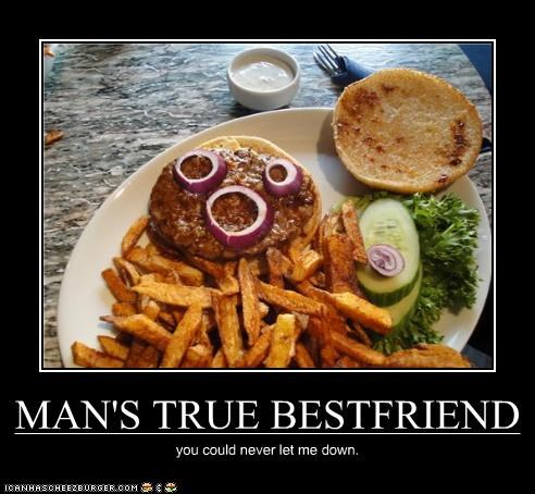 Cheezburger Image 3874716928