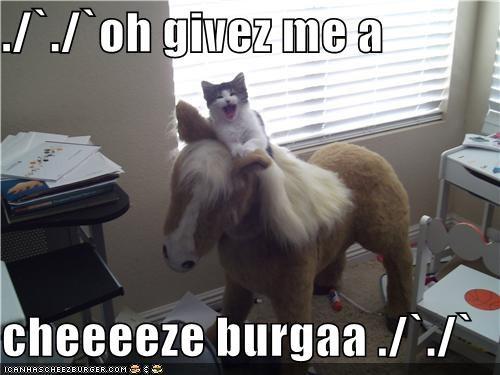 Cheezburger Image 3875517952