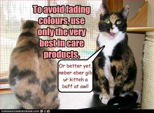 To avoid fading colours, use only the very best in care products. Or better yet, neber eber gib ur kitteh a baff at awl!