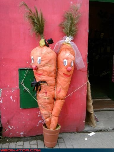 bride carrot bride and groom carrot characters confusing confusing bride and groom funny wedding photos giant carrots groom huh surprise vegetable prisoners were-in-love Wedding Themes wtf wtf is this - 3877022720