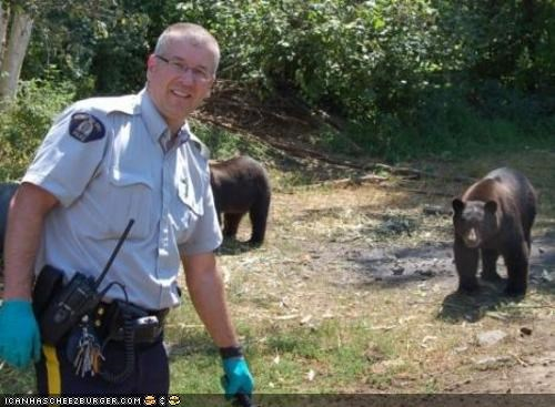 animals bears drugs marijuana news police