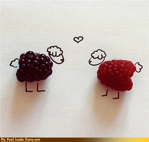 berries blackberry body drawing fruit fruits-veggies raspberry sheep wool - 3879923200