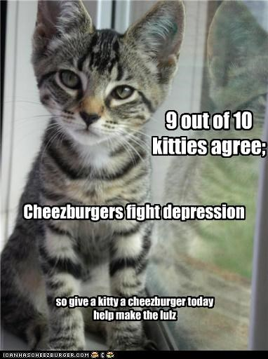 9 out of 10 kitties agree; Cheezburgers fight depression so give a kitty a cheezburger today help make the lulz