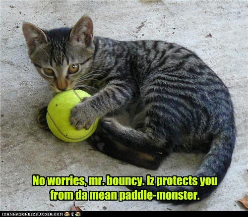 bouncy ball,caption,cat,monster,paddle,protection