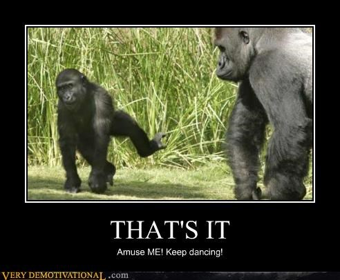 THAT'S IT Amuse ME! Keep dancing!