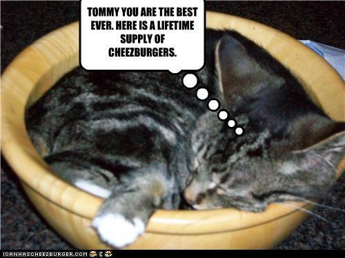 Cheezburger Image 3881486592