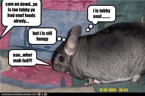 i is tubby enuf..........
