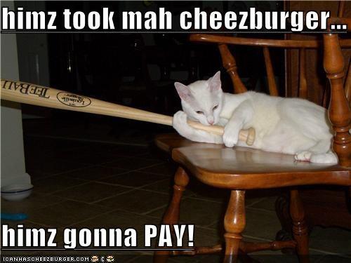 Cheezburger Image 3884893184