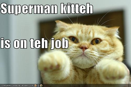 caption flying kitteh on the job superhero superman - 3884914944