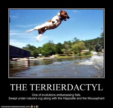 dinosaur evolution extinction FAIL failing flying jack russell terrier terrierdactyl - 3885952000