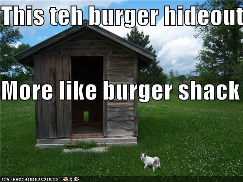 Cheezburger Image 3886037760