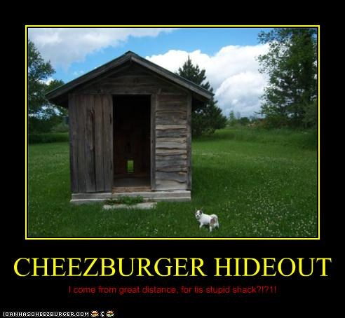 Cheezburger Image 3886081280