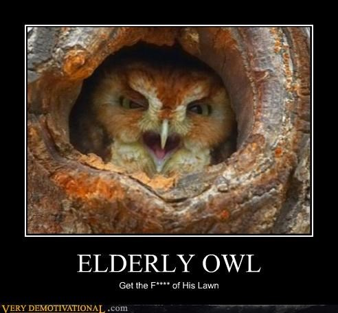 ELDERLY OWL Get the F**** of His Lawn
