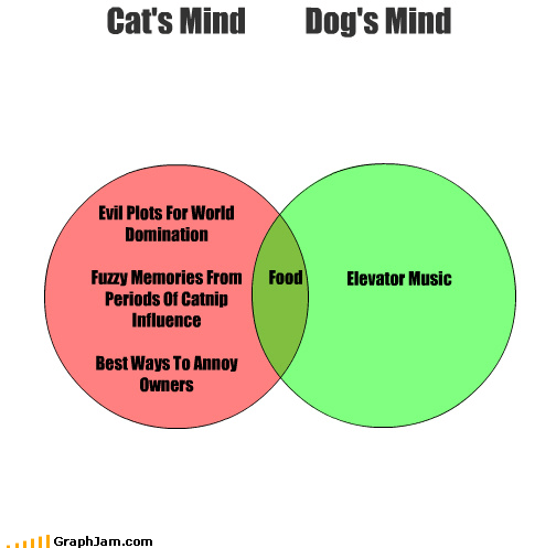 cat dogs mind reader thoughts venn diagram