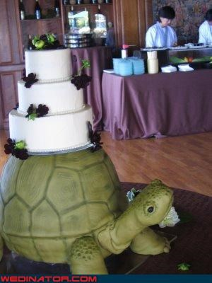 amazing wedding cake,funny wedding photos,real or fake,Sheer Awesomeness,themed wedding cake,turtle wedding cake