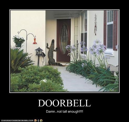 DOORBELL Damn..not tall enough!!!!