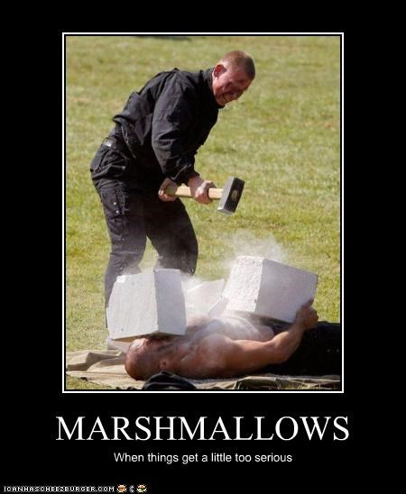 MARSHMALLOWS When things get a little too serious