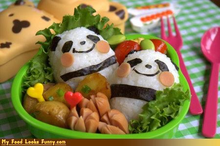 bento,bento box,box,cheeky,cute,happy pandas,hotdogs,panda,rice
