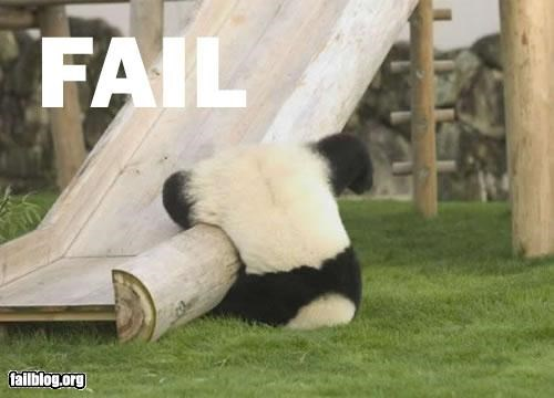animals,faceplant,failboat,g rated,ouch,panda,slides
