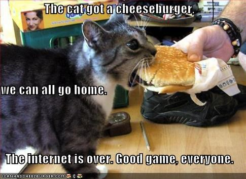 The cat got a cheeseburger, we can all go home.   The internet is over. Good game, everyone.