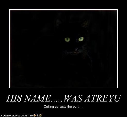 HIS NAME.....WAS ATREYU Ceiling cat acts the part.....