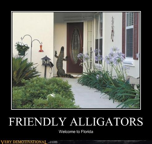 FRIENDLY ALLIGATORS Welcome to Florida