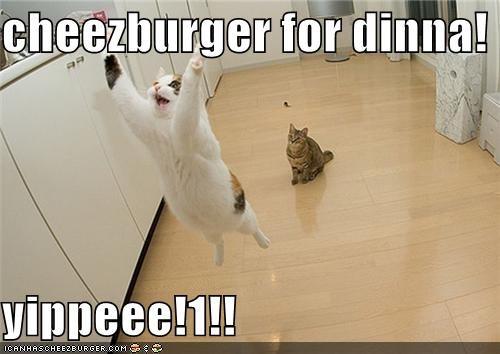 Cheezburger Image 3890882560