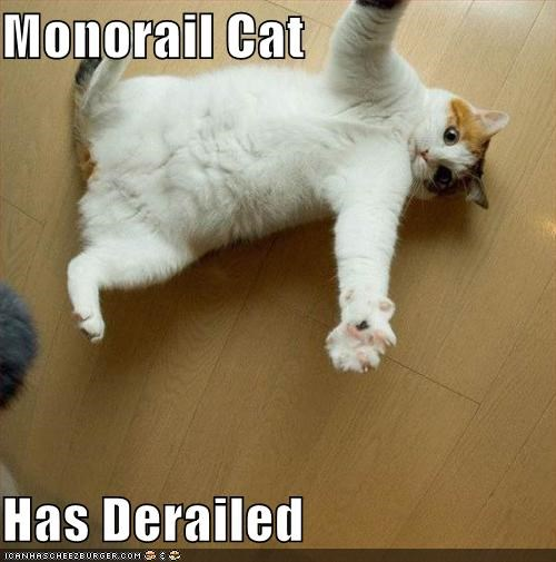 caption cat crash derailed help monorail cat - 3891254528