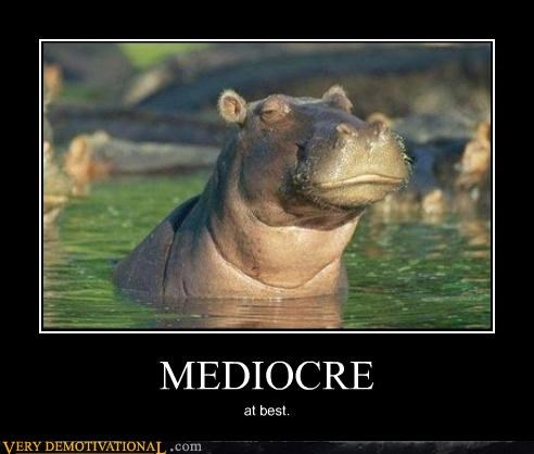 anthropomorphizing,diss,high standards,hilarious,hippo,water
