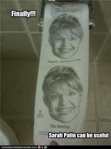 Finally!!! Sarah Palin can be useful