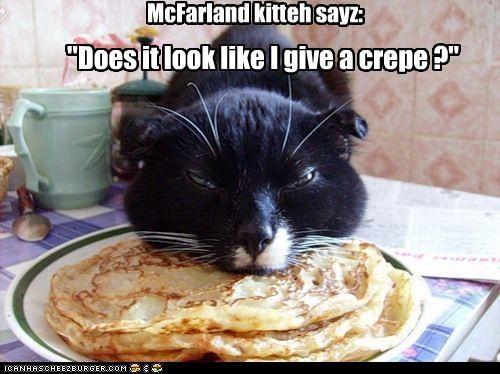 "McFarland kitteh sayz: ""Does it look like I give a crepe ?"""