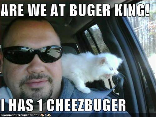 Cheezburger Image 3894949120