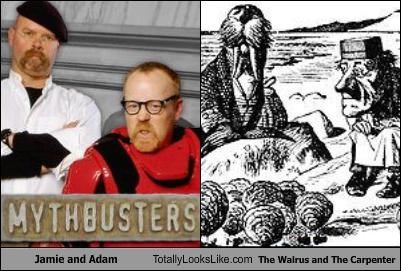 jamie and adam,mythbusters,the walrus and the carpenter