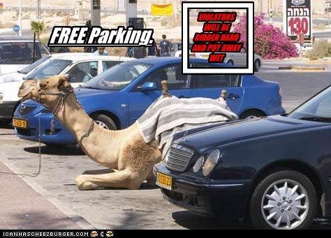 VIOLATORS WILL BE RIDDEN HARD AND PUT AWAY WET c FREE Parking.