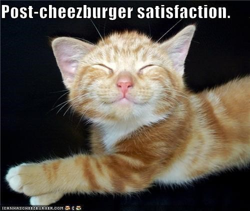 caption kitten noms post-cheezburger satisfaction - 3895984128