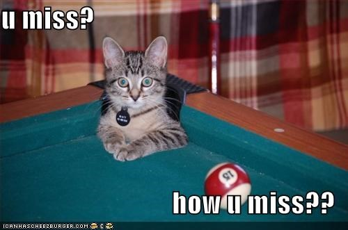 caption cat corner pocket miss pool - 3896048896