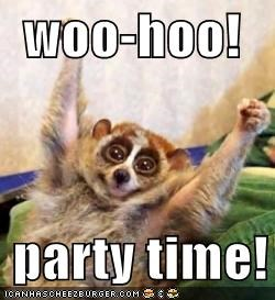 Woo Hoo Party Time Cheezburger Funny Memes Funny Pictures