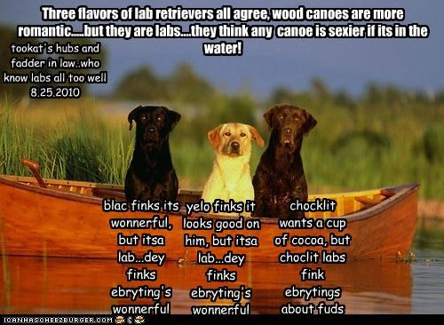 Three flavors of lab retrievers all agree, wood canoes are more romantic.....but they are labs....they think any canoe is sexier if its in the water! blac finks its wonnerful, but itsa lab...dey finks ebryting's wonnerful yelo finks it looks good on him, but itsa lab...dey finks ebryting's wonnerful chocklit wants a cup of cocoa, but choclit labs fink ebrytings about fuds tookat's hubs and fadder in law..who know labs all too well 8.25.2010