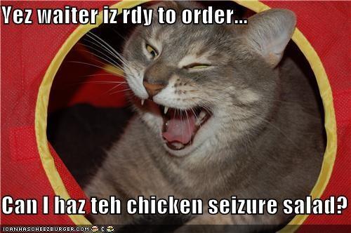 Cheezburger Image 3898919680