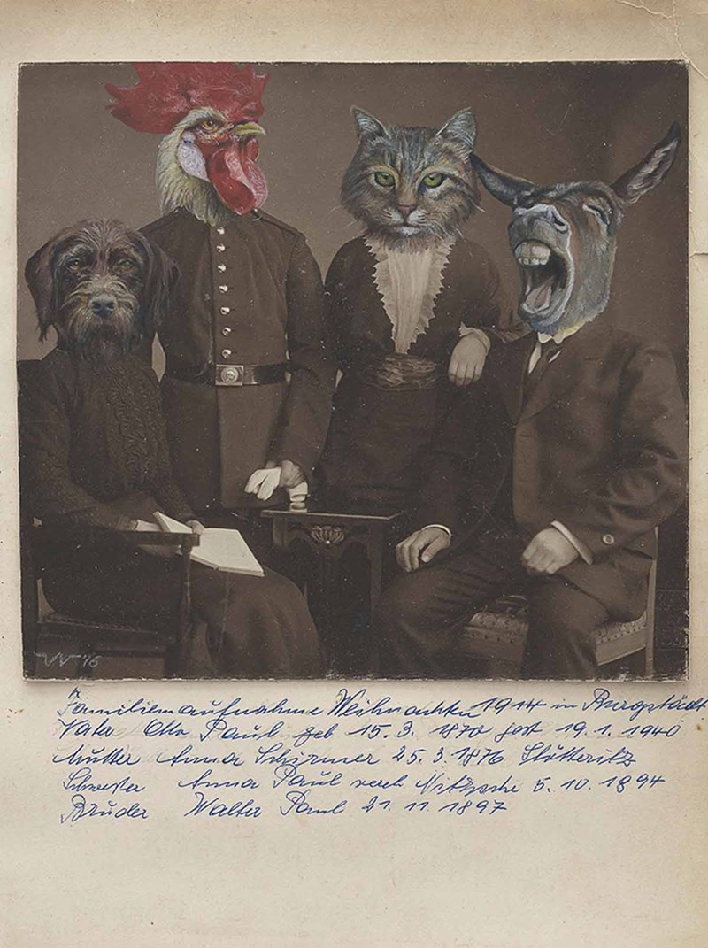 animals inserted into vintage photos