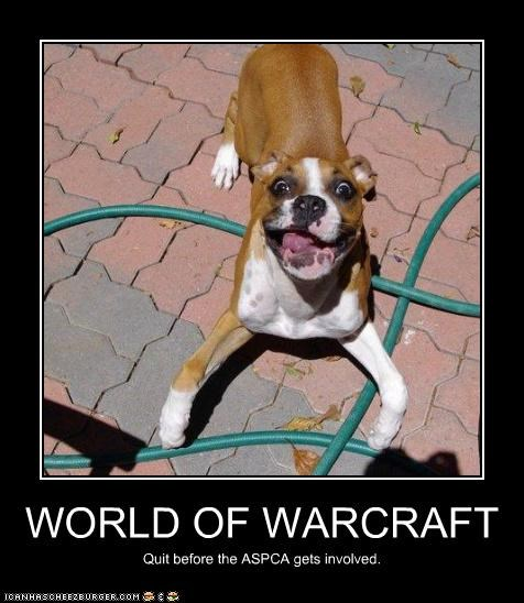 WORLD OF WARCRAFT Quit before the ASPCA gets involved.