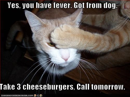 Cheezburger Image 3901709824