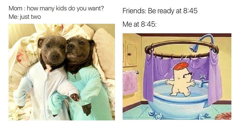 Collection of happy, wholesome, loving memes about friendship.